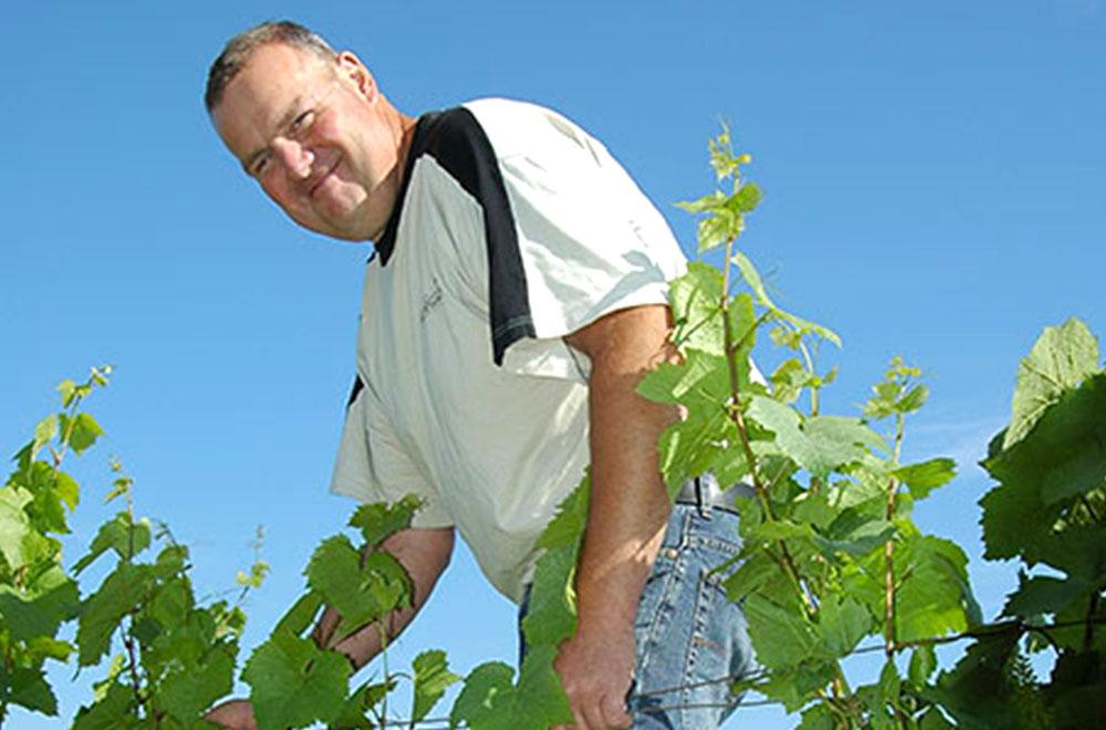 caves bérigny producteur vins spiritueux